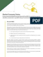 Market Economy Status, Cina
