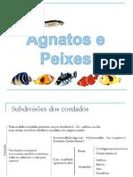 Agnatos e Peixes.pdf