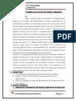 Informe de Comercializacion de Hidrocarburos