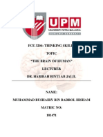 FCE 3204 The Brain of Human