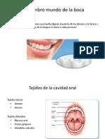 GSK - El cuidado de la boca y prótesis