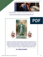 El Camino de Maria . Edicion 951. Tiempo de Adviento. Primer Domingo