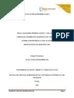 Evaluación Intermedia Fase 2 Grupo 102023_260