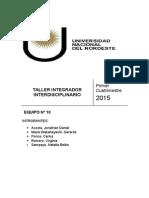 Taller Integrado Interdiciplinario