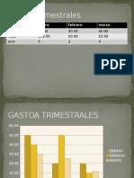 Gastos Trimestrales contab