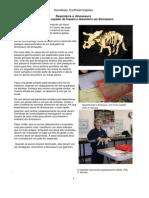 Modelo de triceratops fossil para recortar