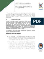 Normas Generales Para El Laboratorio Q. Org. I. 2010