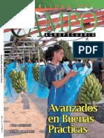 CAMPO - AÑO 15 - NUMERO 172 - OCTUBRE 2015 - PARAGUAY - PORTALGUARANI
