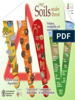 Soil Infograph by FAO (Full Page)