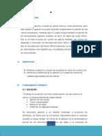 CURADO Y SALADO DE CARNES.docx