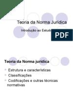 Teoria Norma Juridica