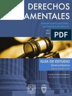 Guia_Derechos_Fundamentales.pdf