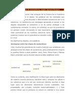 Clases Léxicas de Sustantivos Según Bosques -y Eri