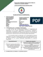 Silabo Proyecto Gestion Empresarial