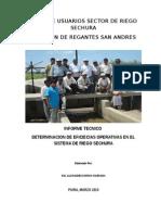 Informe Tecnico de eficiencia en canales de riego