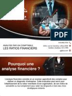 Diagnostic d'entreprise avec les ratios d'analyse financière