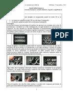187768325 Schede Per Il Laboratorio Per Aritmetica in Pratica
