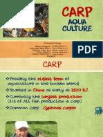 Carp Aquaculture
