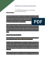 Nuevos Criterios Constitucionales de La Csjn Sobre Prisión Preventiva y Excarcelación Editado