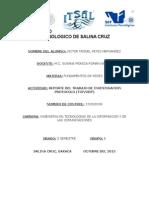 Victor Miguel r.h...... Reporte Del Trabajo de Investigacion