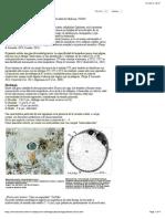 Blastocistosis - Recursos en Parasitología - Unam (Checked)