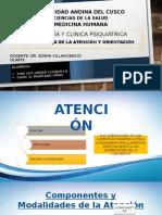 Psicopatología de La Atención y Orientación.