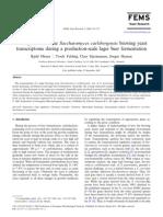 Olesen Et Al-2002-FEMS Yeast Research