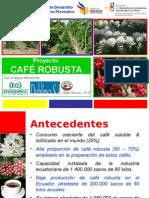 Café Robusta CONSEP 2