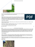 NS SEME » Rasađivanje i nega biljaka paprike NS SEME.pdf