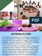 Yogurt de Mora