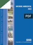 Cap Mineria Informe Ambiental 2003