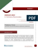 Lectura_ Racionales.pdf