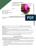 Clases de Polinización