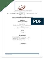 Monografia Concesiones Mineras Final