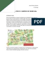 Georruta Por El Campus de Moncloa