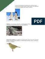 Exposicion Biologia Imagenes