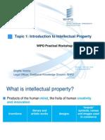 Presentacion 1. Talle Practico sobre PI y PPII