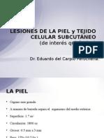 Lesiones de La Piel y Tejido Celular Subcutã-neo[2]