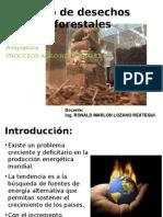 Clase1-Uso de Desechos Forestales