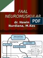 neuromuskuler.ppt