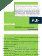 absorcion de sistemas plancha.docx