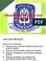 Organisasi Profesi Gizi