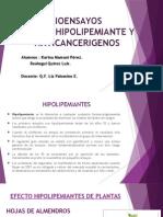 efecto-hipolip-noxia