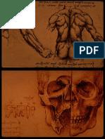 Da Vinci, Leonardo - Vari Disegni e Schizzi