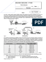 teste1-bg11-15-16