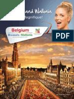 Brussels Wallonia