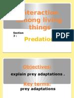 prey adaptation