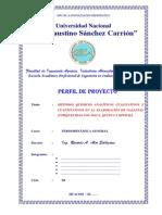 2. Modelo de Perfil Del Proyecto de Elaboracion de Tg - 2014 - II - Eapiia
