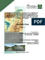 Estudio.hidrologico.hidraulico.y.ambiental.rio.Risaralda.2010