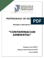 TRABAJO DE BIOLOGÍA - CONTAMINACION .docx